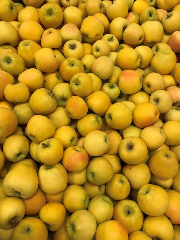 Pomme Altess - Au fil des saveurs producteurs fruits légumes