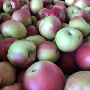 Idared - Au fil des saveurs producteurs fruits légumes Manosque