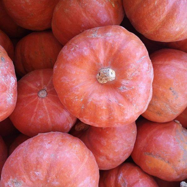 Potimarron - Au fil des saveurs producteurs fruits légumes Manosque